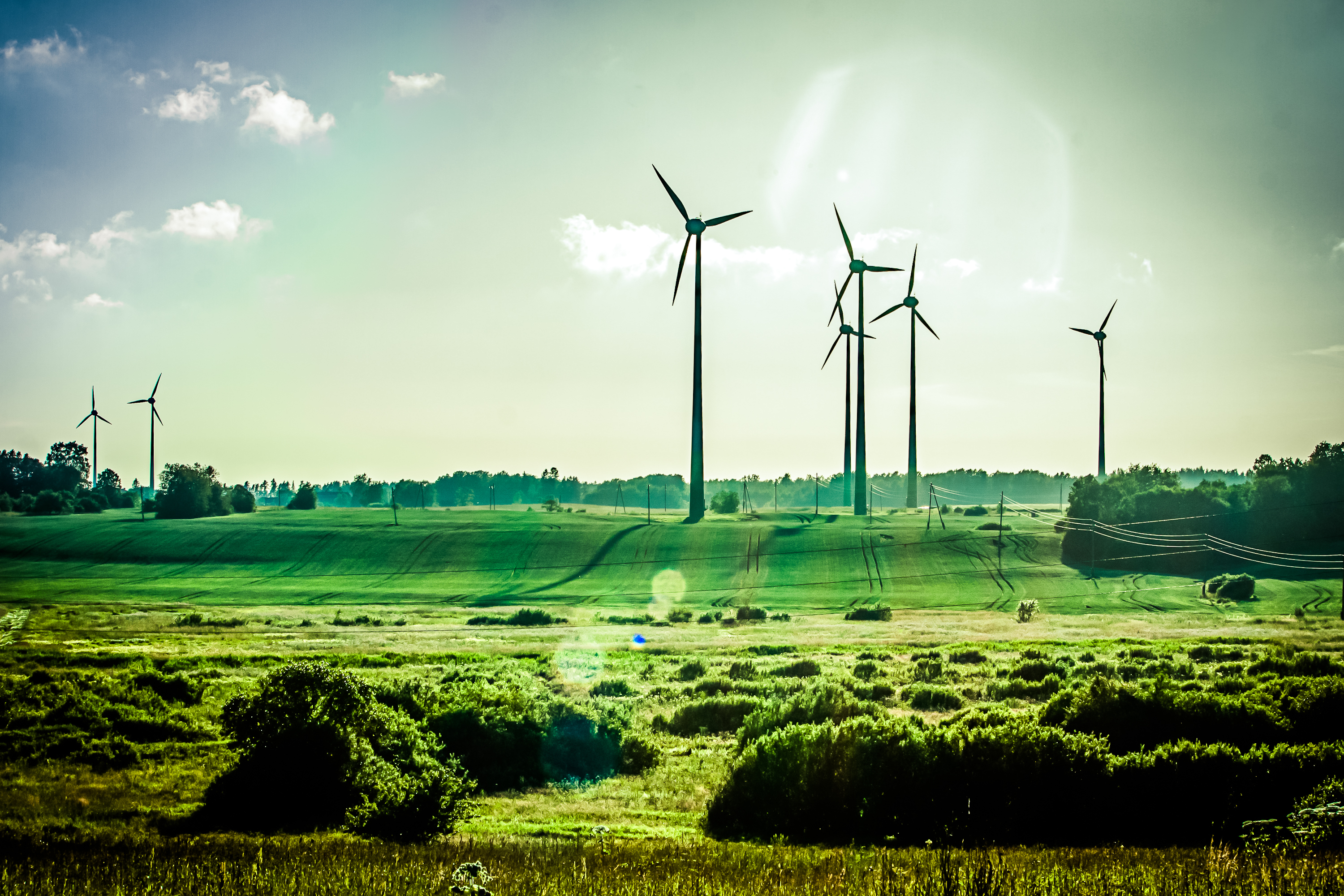 RWE NPOWER RENEWABLES